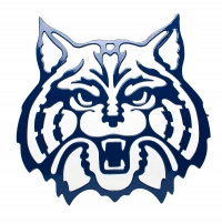 UofA Wildcat Large Blue