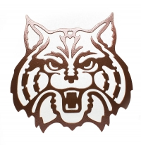 UofA Wildcat Large Copper