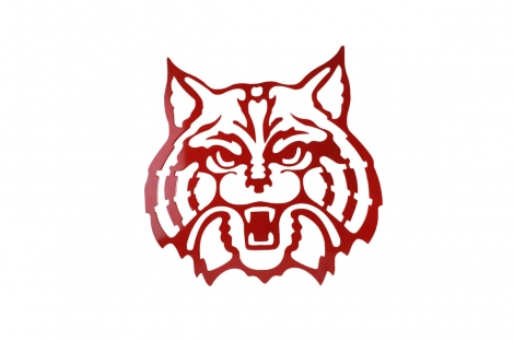 UofA Wildcat Large Red