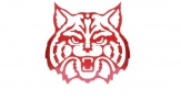 Small Wildcat Wall Hanger Face (red)