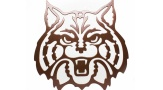 Large Wildcat Wall Hanger Face (copper)