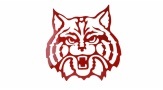 Large Wildcat Wall Hanger Face (red)